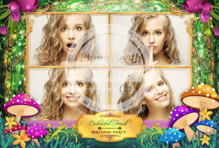 Enchanted Forest Postcard